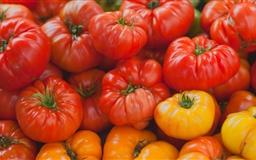 Heirloom Tomatoes Mac wallpaper
