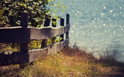 Wooden Fence Mac wallpaper