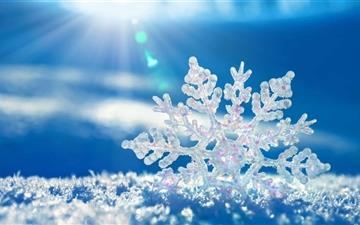The Snowflake Mac wallpaper