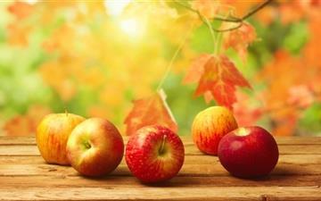 Fall Apples Mac wallpaper