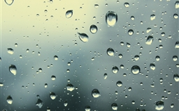 Rain Drops 5 Mac wallpaper