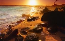 Summer beautiful sunset