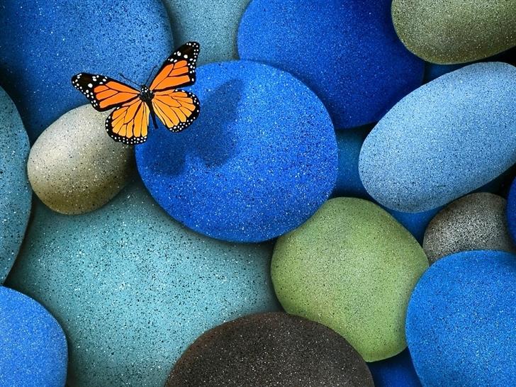 Lonely Butterfly Mac Wallpaper