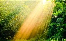 Rays Of Light Mac wallpaper