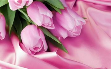 Romantic Tulips Mac wallpaper