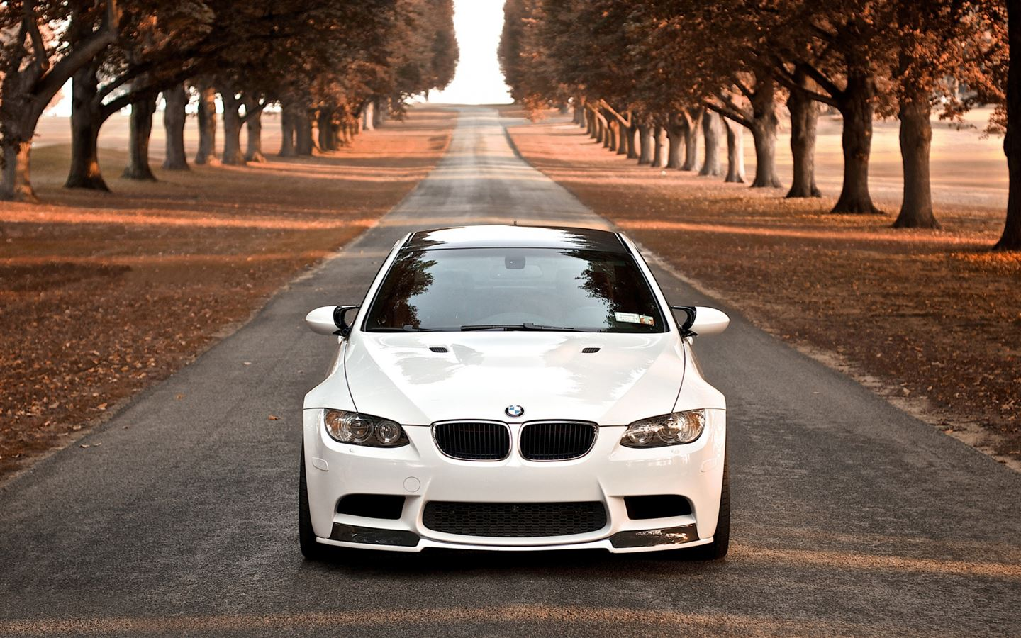 Bmw M3 Fall Mac Wallpaper Download Allmacwallpaper