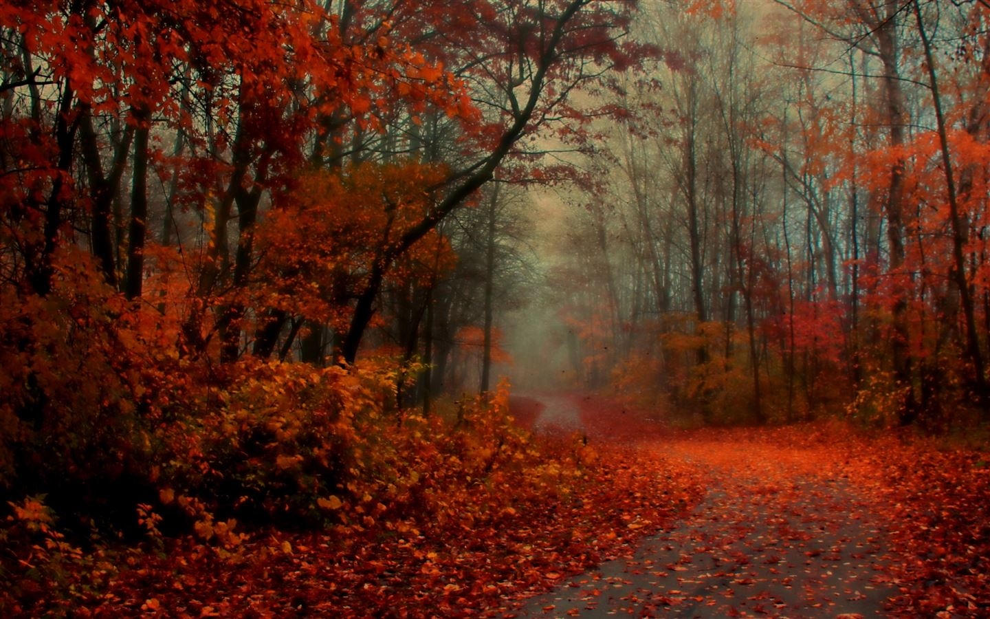 Romantic Autumn Mac Wallpaper Download Allmacwallpaper