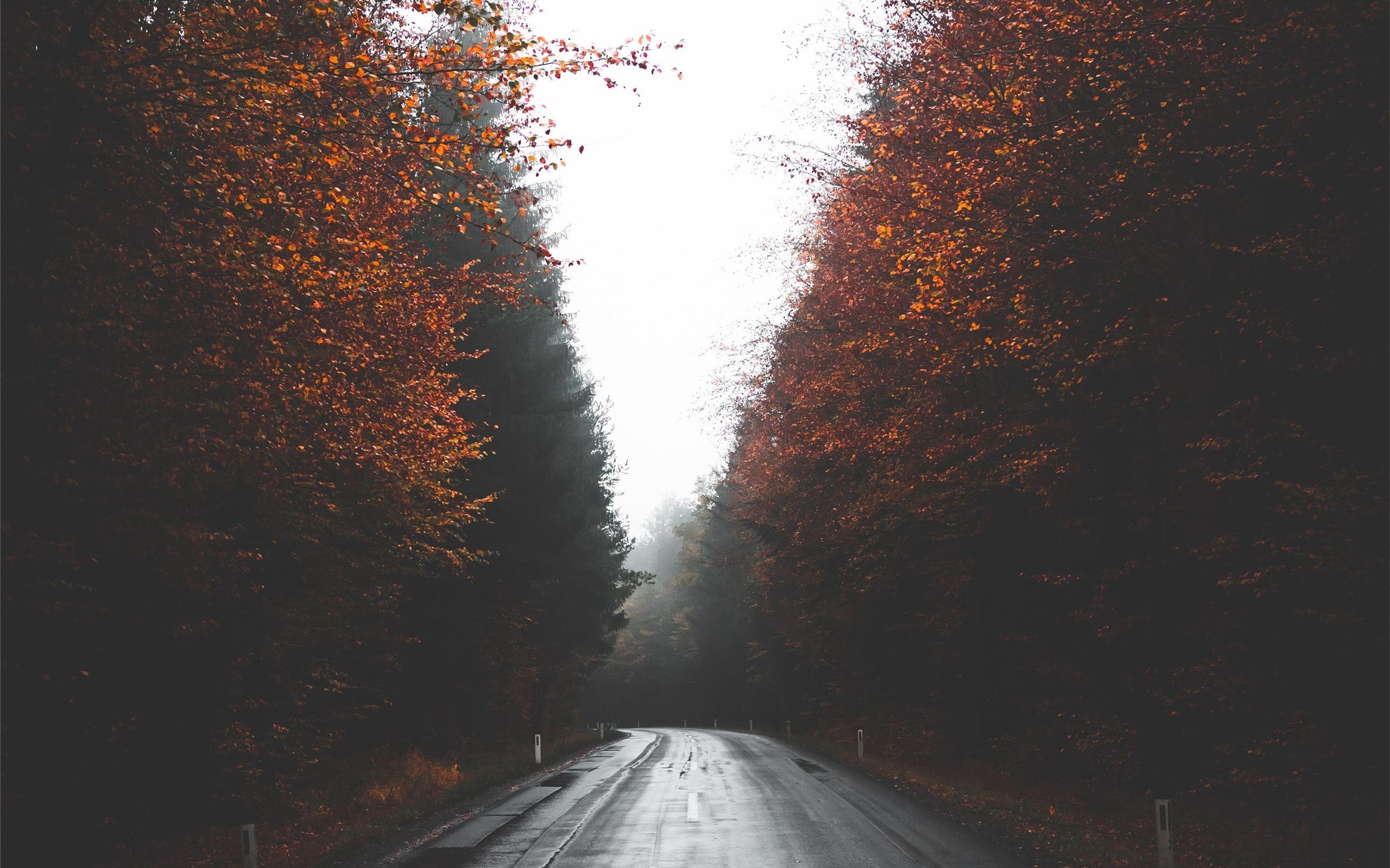 Autumn Street In Austria Macbook Air Wallpaper Download Allmacwallpaper