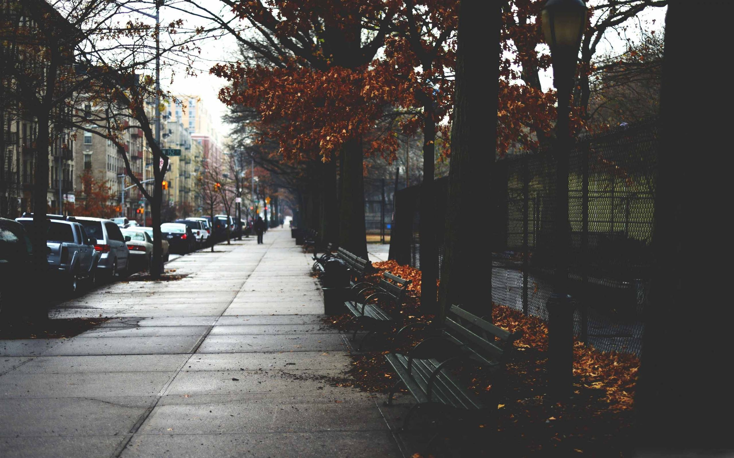 Cold Autumn Day In New York Mac Wallpaper Download Allmacwallpaper