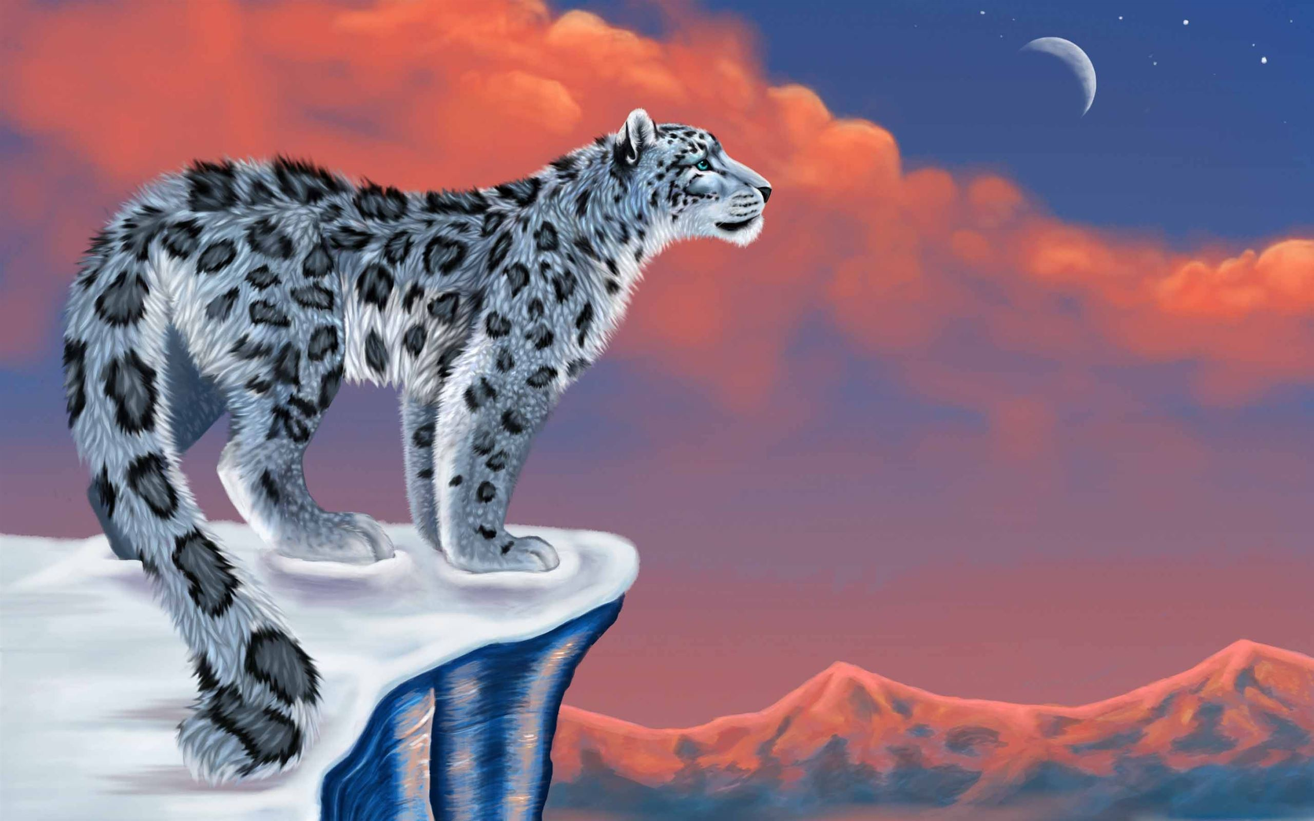 Snow Leopard Drawing Mac Wallpaper Download Allmacwallpaper