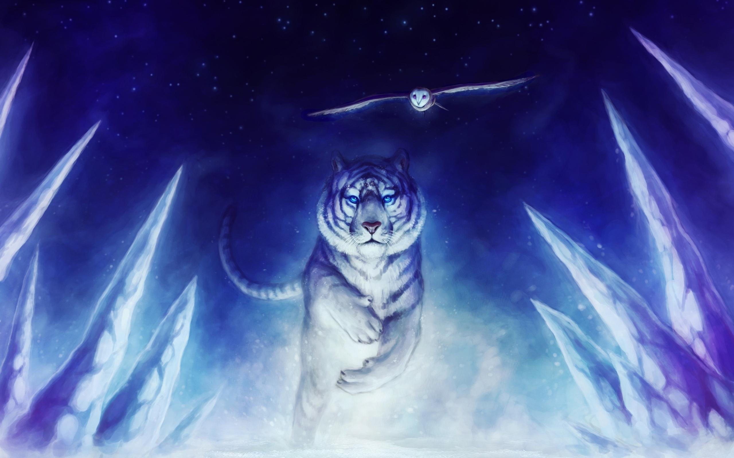 1000 Best Owl Mac Wallpapers Free Hd Download Allmacwallpaper