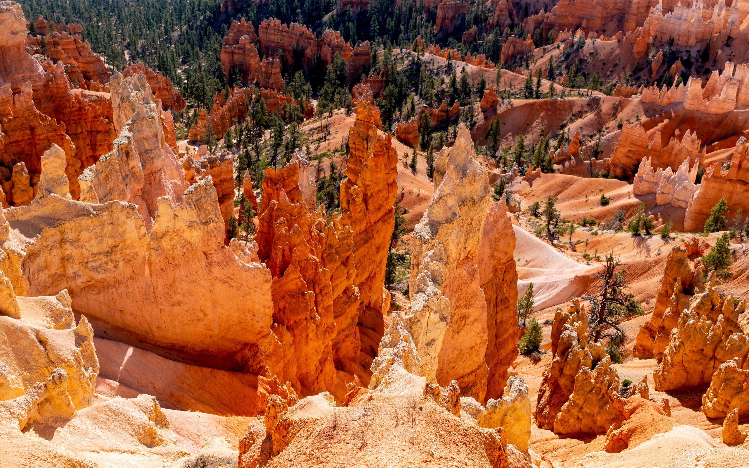 rocky mountain photography MacBook Air