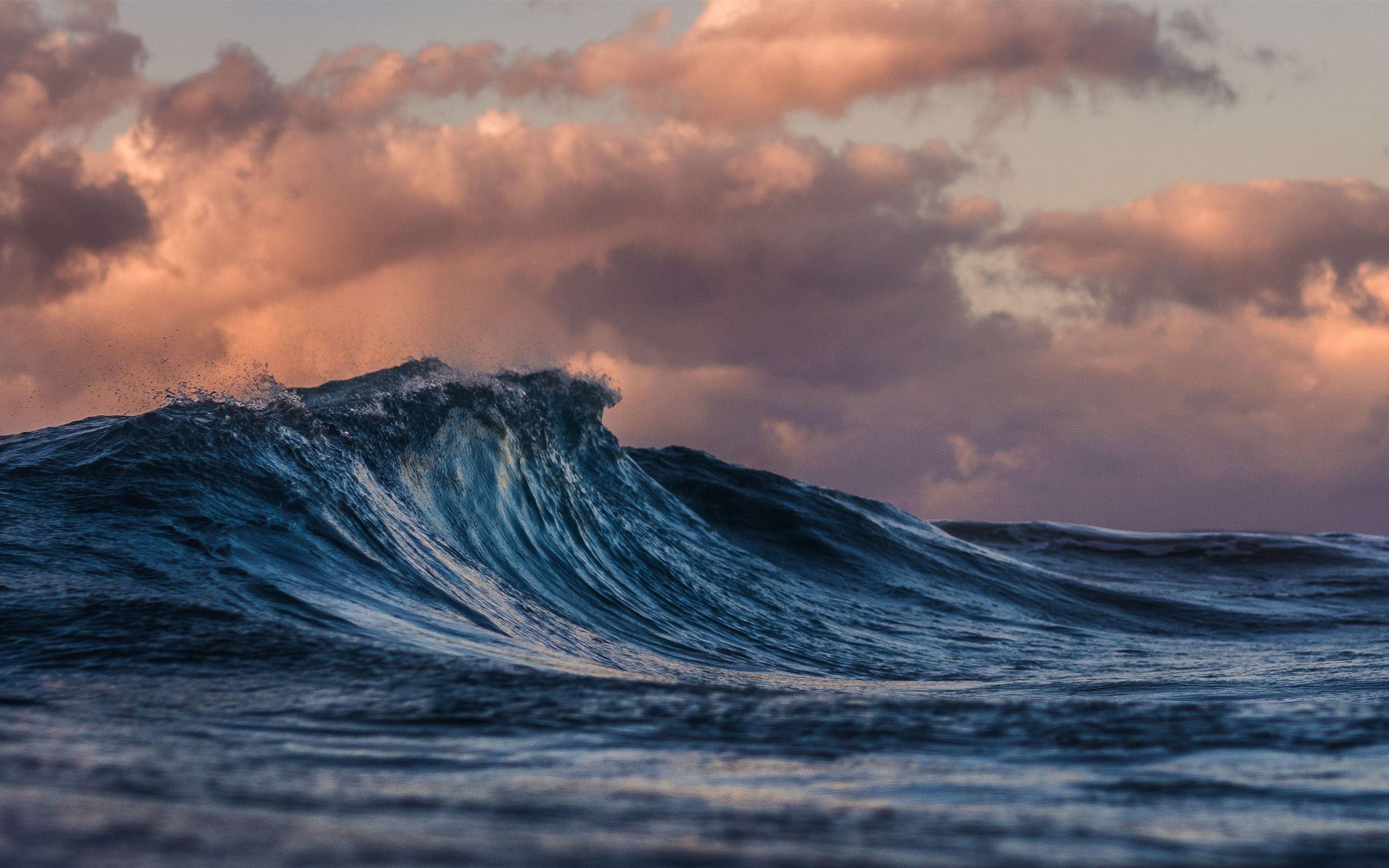 Waves for mac crack