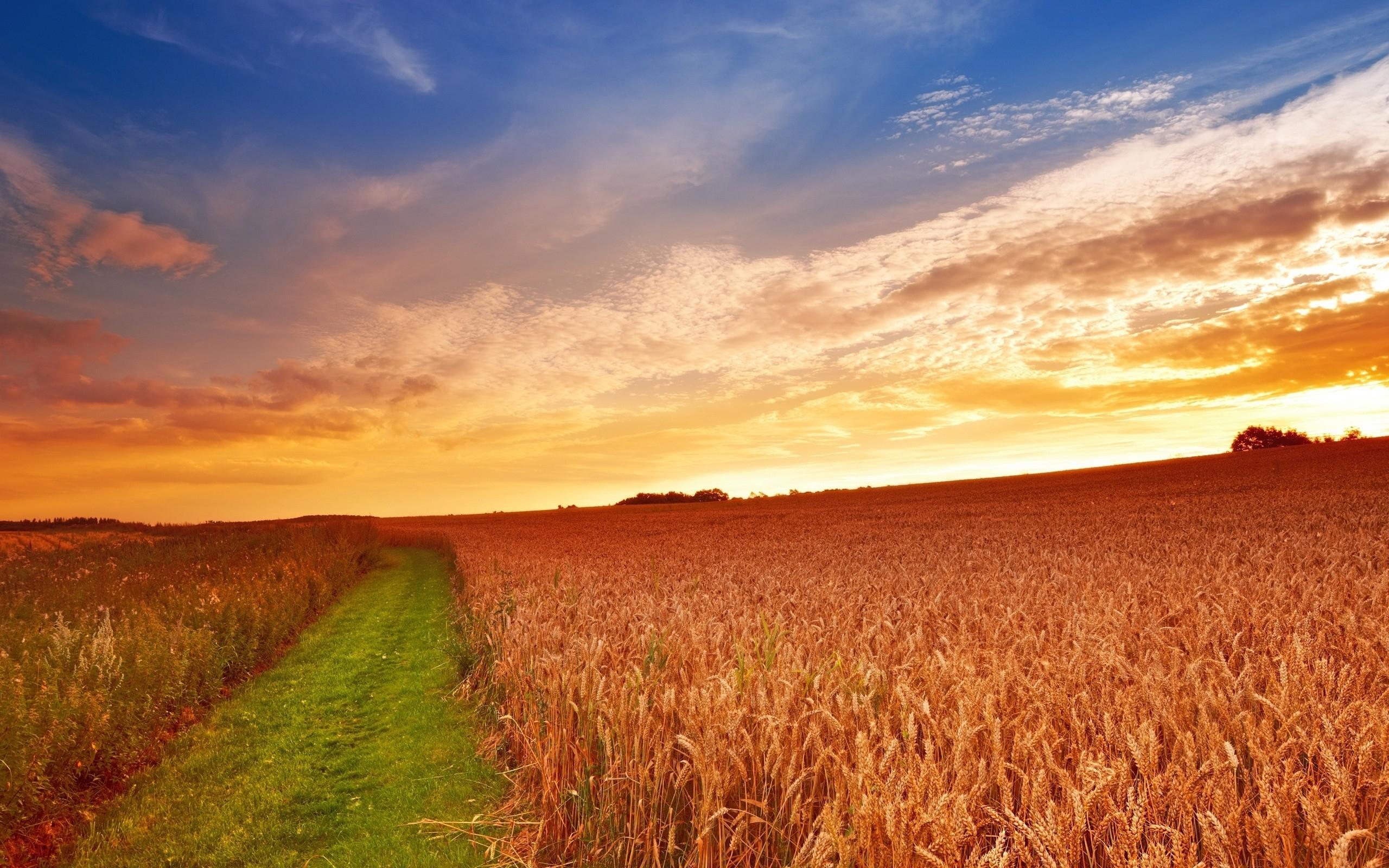 Farm sunset Mac Wallpaper Download | AllMacWallpaper
