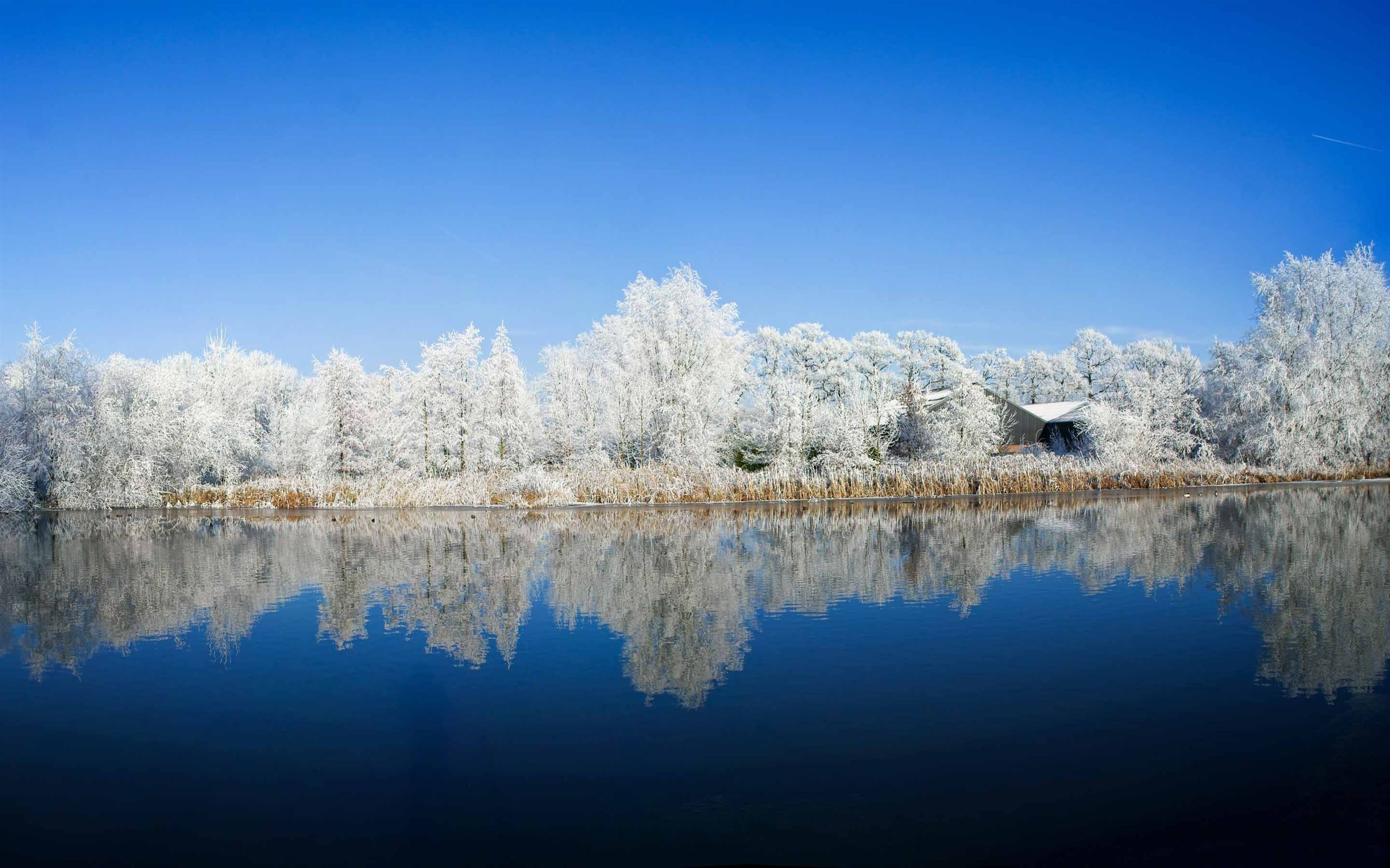 panoramic photography winter mac wallpaper download free mac