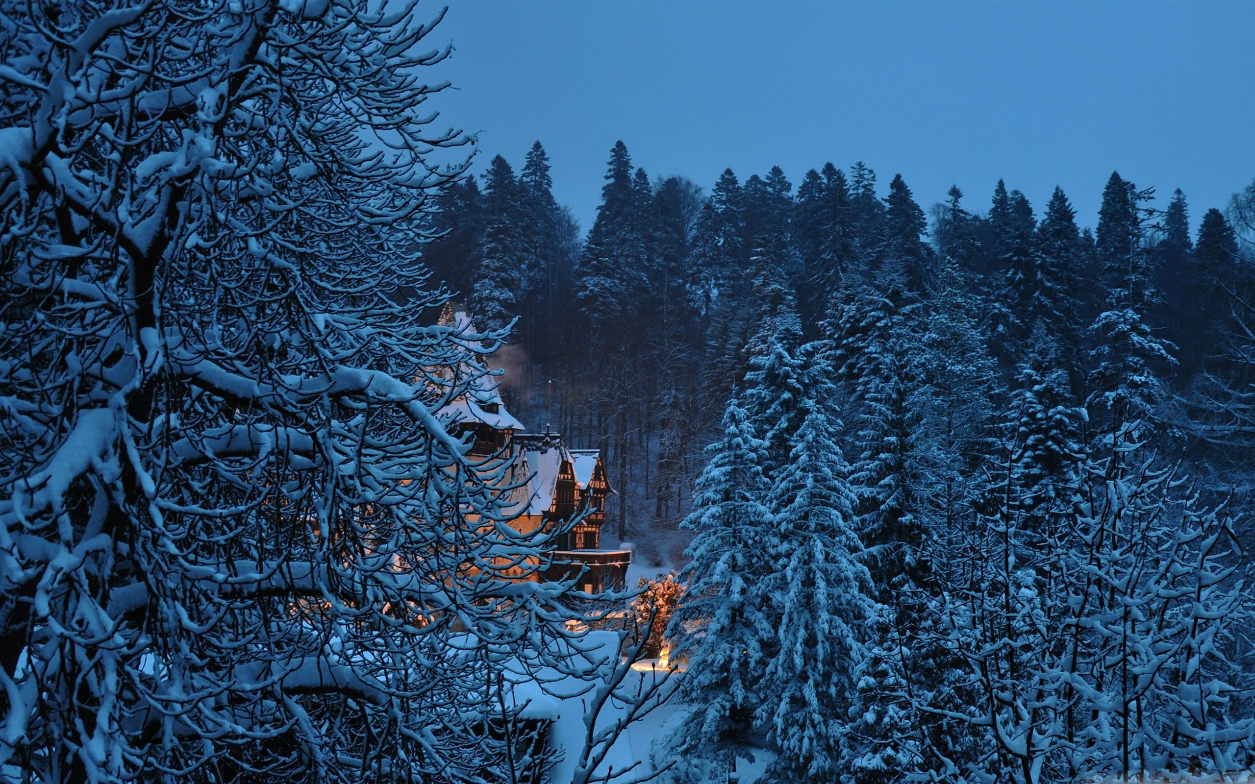 Peles Castle Romania Winter Mac Wallpaper Download Free