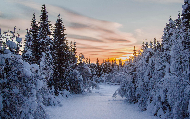 The sunset in winter Mac Wallpaper Download   Free Mac ...
