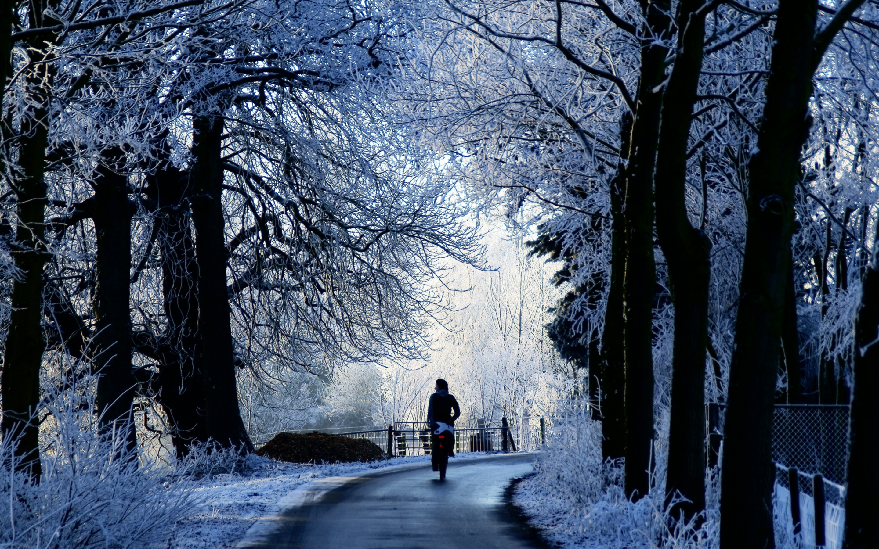 Winter Wallpaper For Mac winter wallpaper scene road wallpapers mac retina macbook