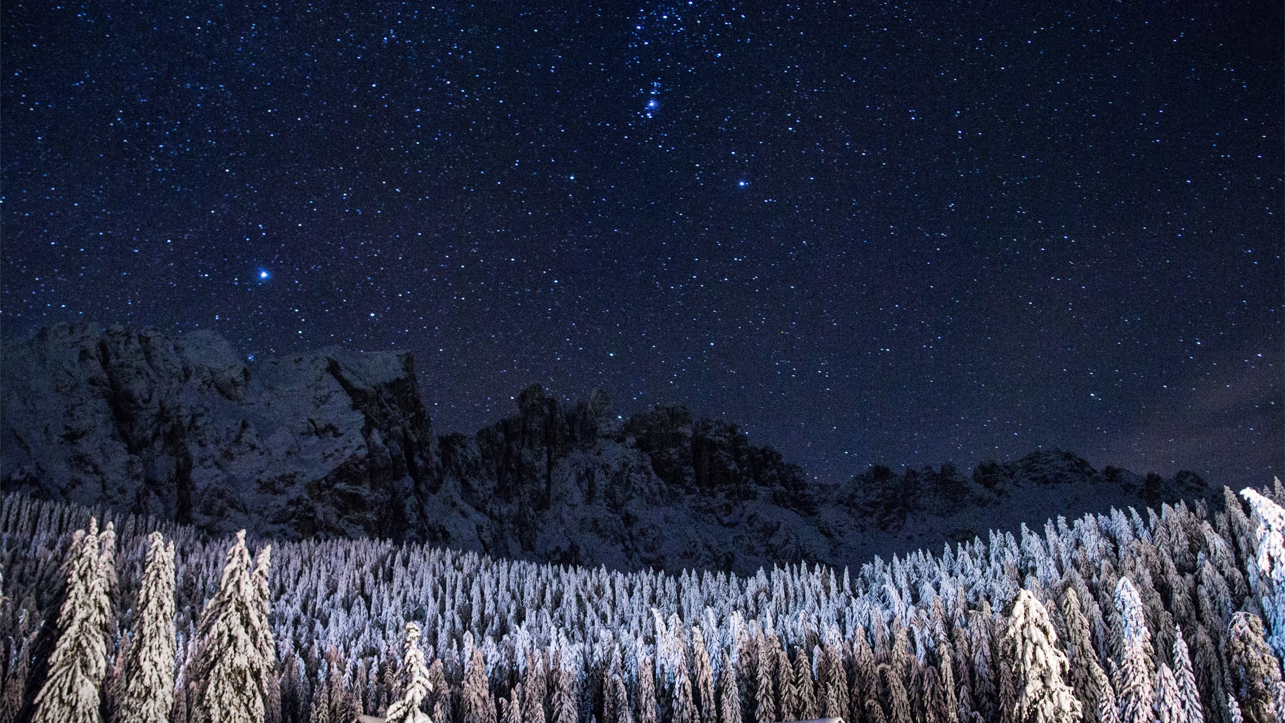 Night Sky Over A Snowy Forest Mac Wallpaper Download