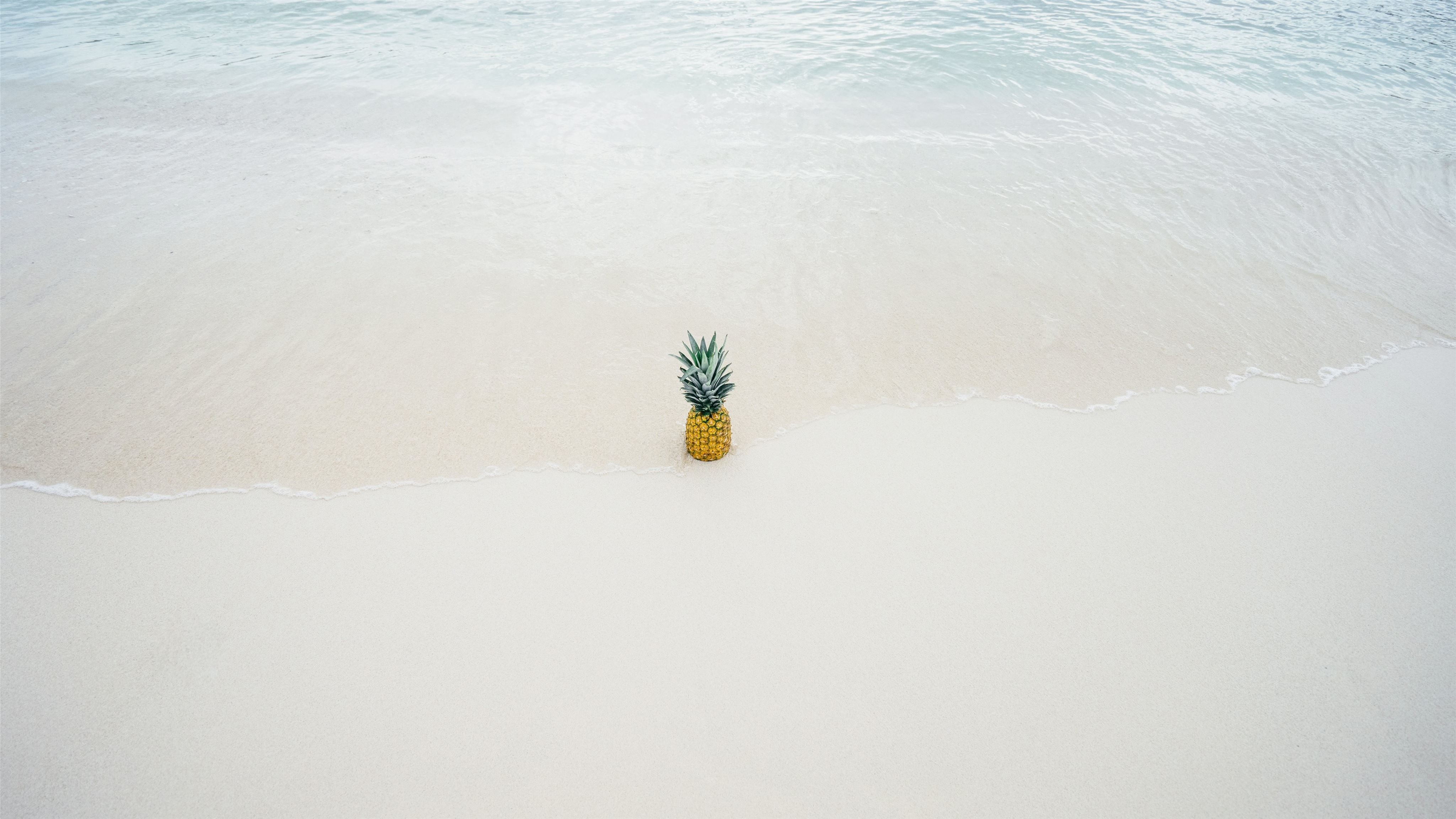 Pineapple in the beach sand Mac Wallpaper Download | Free ...
