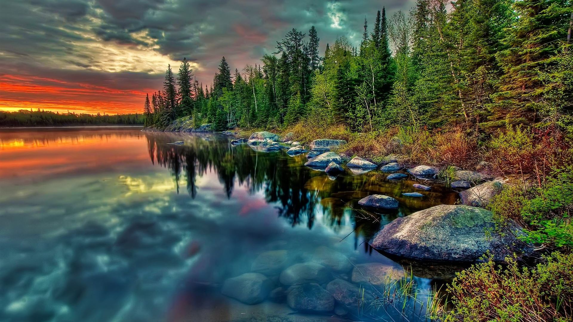 Magic Of Nature Mac Wallpaper Download