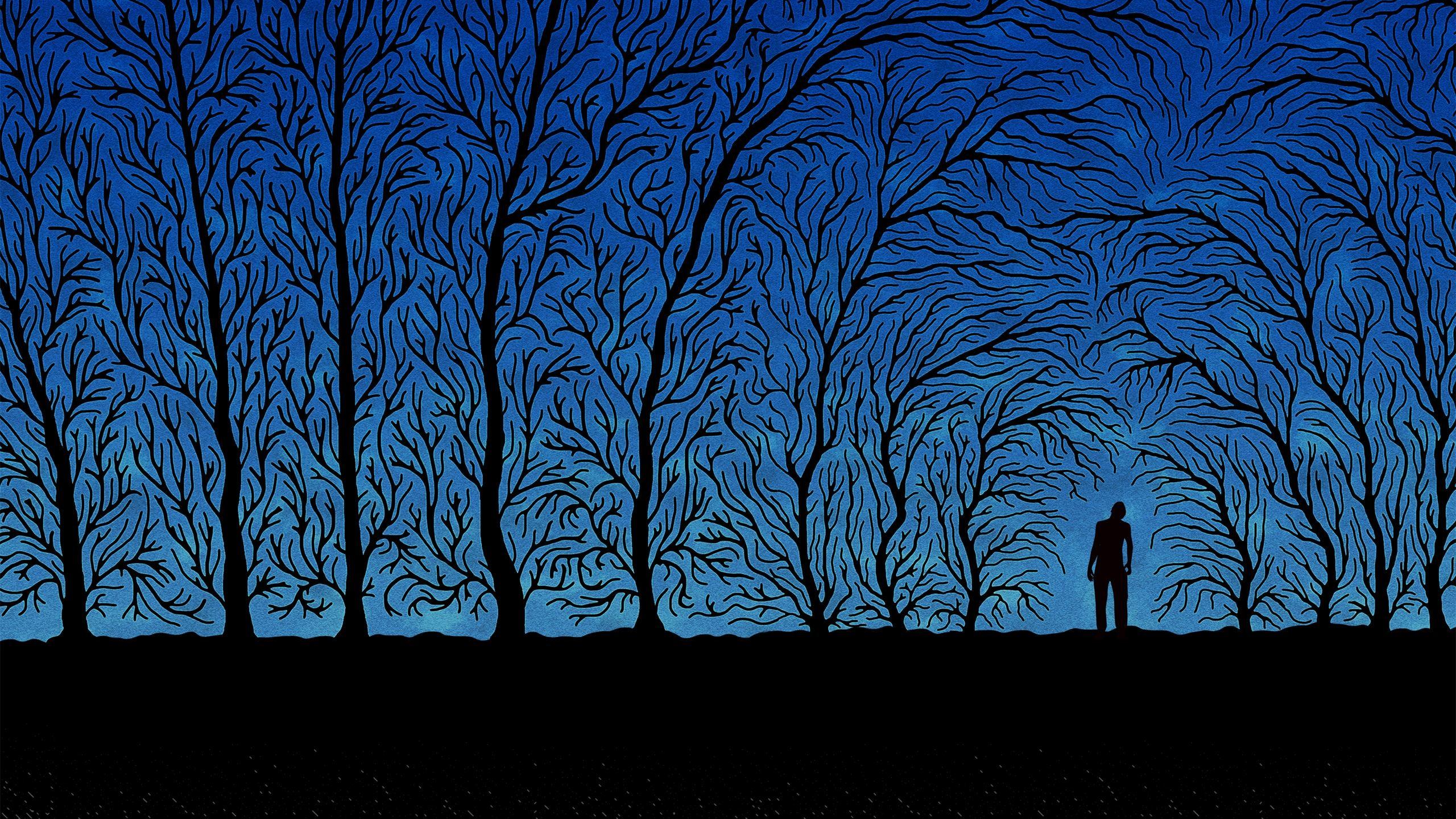 Black forest Mac Wallpaper Download | Free Mac Wallpapers ...
