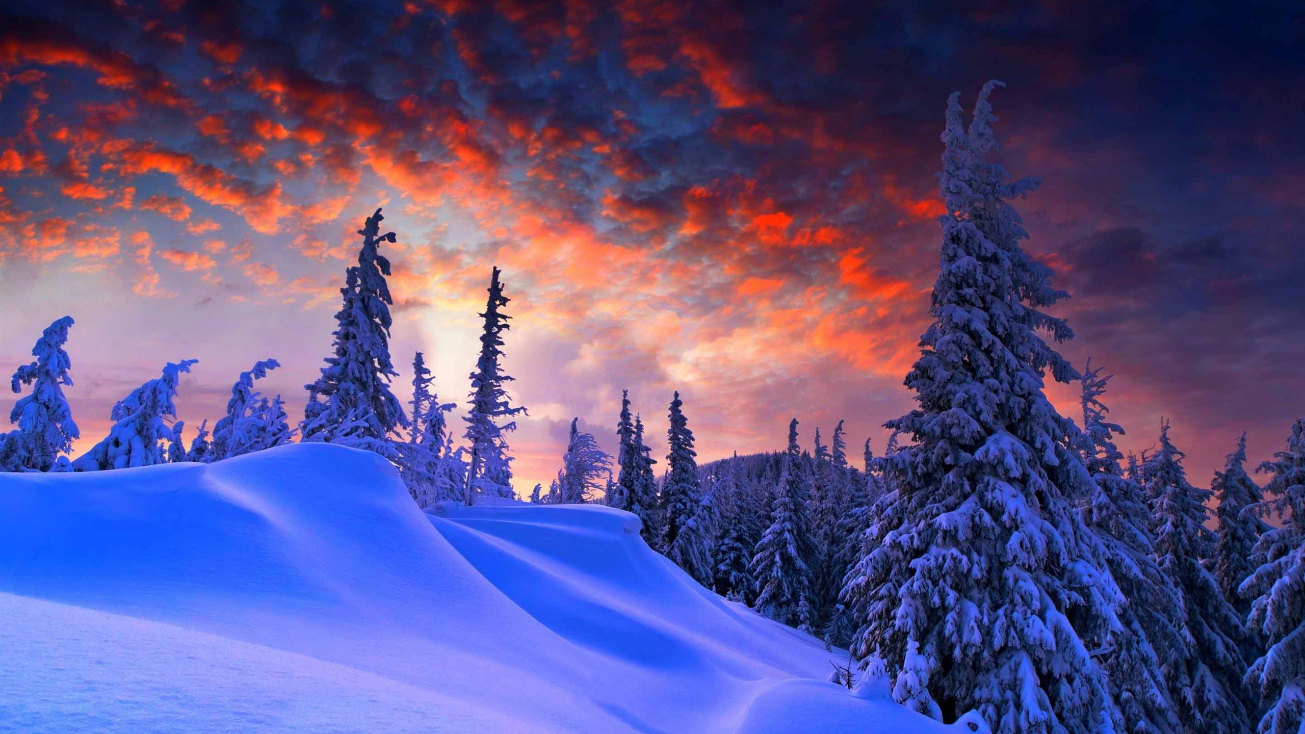 Winter Christmas Macbook Air Wallpaper Download Allmacwallpaper