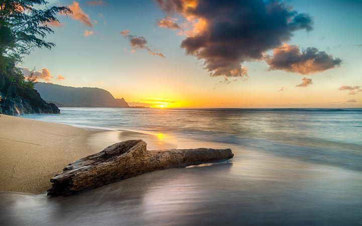 driftwood on beach at sunset on north shore of kau iMac wallpaper