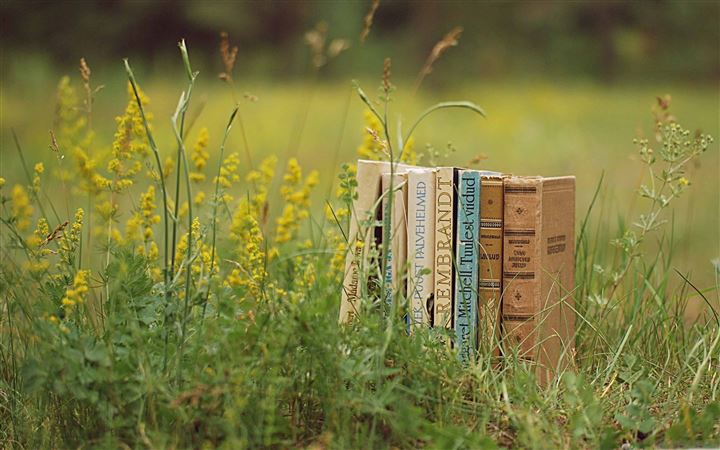 Old Books Outdoors All Mac wallpaper