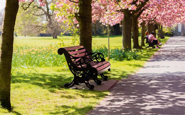 Bench Springtime All Mac wallpaper