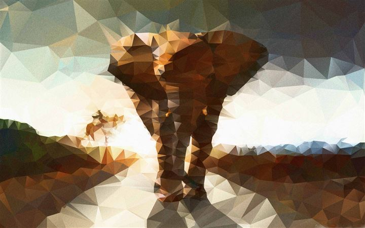 Elephant Polygon Illustration All Mac wallpaper