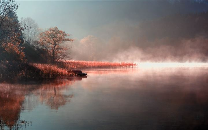Fog landscapes nature All Mac wallpaper