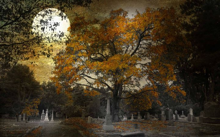 Halloween View All Mac wallpaper