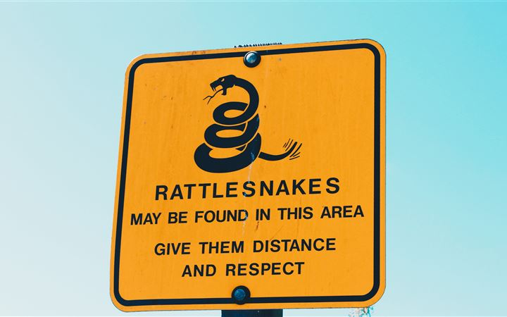 Rattlesnakes All Mac wallpaper