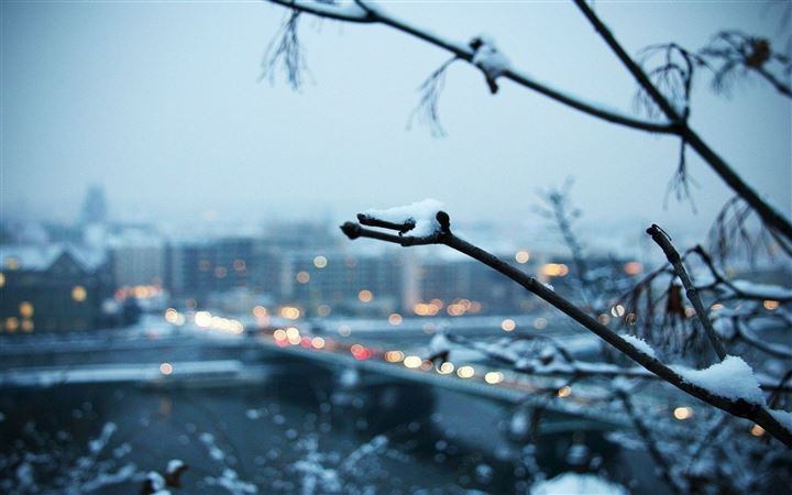 Snowy Branch With The City In The Background All Mac wallpaper
