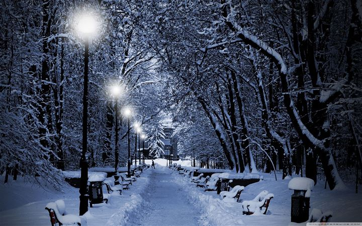 Snowy park at night MacBook Air wallpaper