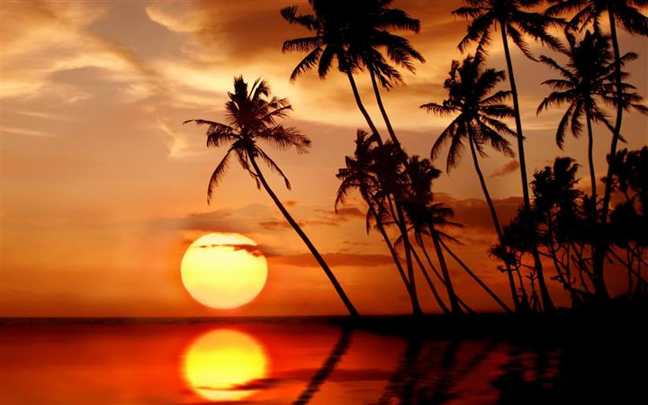 Sunset In Tropical Paradise All Mac wallpaper