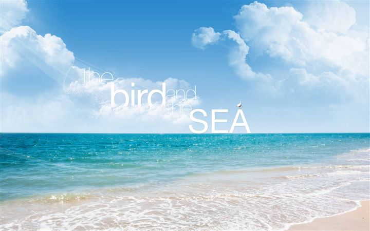 The Bird And The Sea All Mac wallpaper