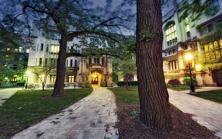 The University Of Chicago All Mac wallpaper