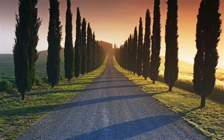 Trees Italy Roads All Mac wallpaper