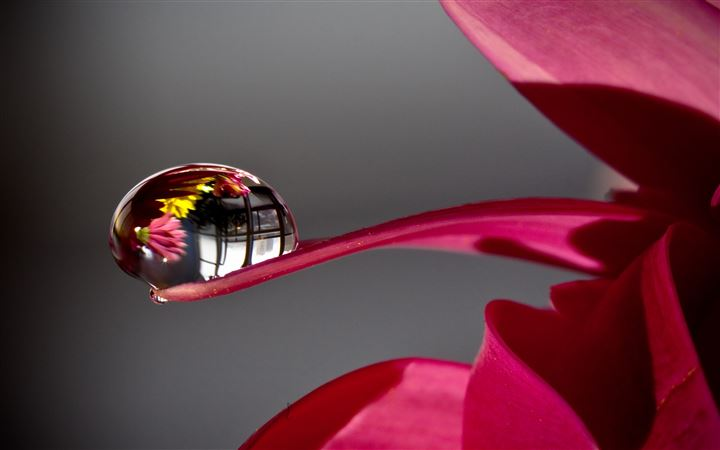 Water Drop Reflection All Mac wallpaper