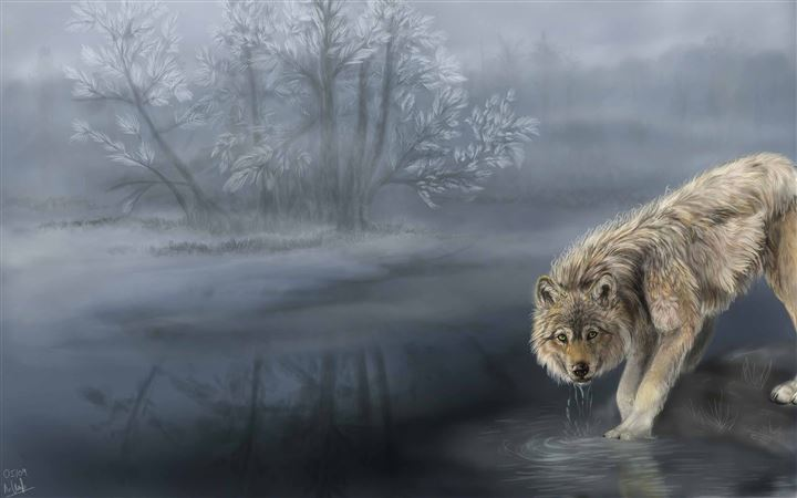 Wolf Drinking Water Painting All Mac wallpaper