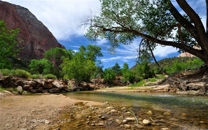 Zion National Park All Mac wallpaper