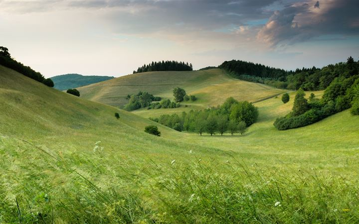 green hills with forest under cloudy sky during da All Mac wallpaper