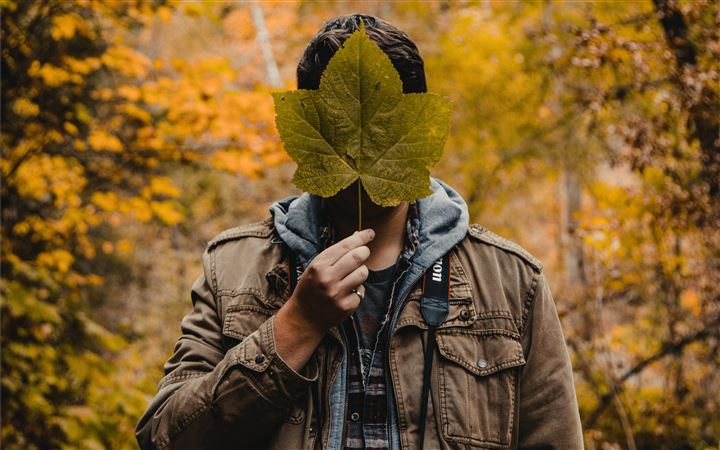 man holding green leaf co... All Mac wallpaper