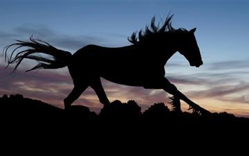 Free Horse Mac Wallpapers Imac Wallpapers Retina Macbook Pro