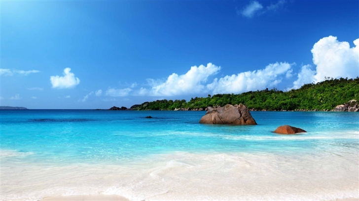 Tropical Beach Sunshine Mac Wallpaper