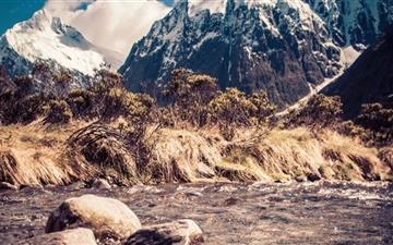 Monkey Creek In New Zealand Mac wallpaper