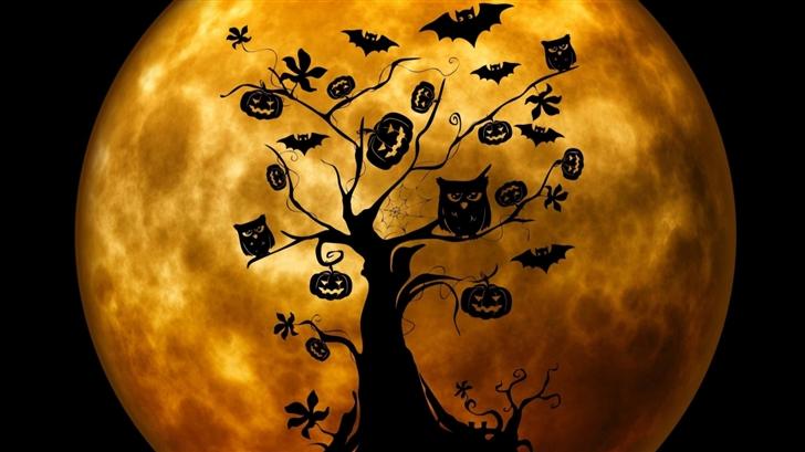 Halloween Owls And Bats Mac Wallpaper
