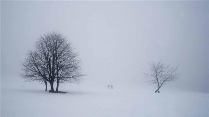 Misty Scene From Winterberg Mac Wallpaper